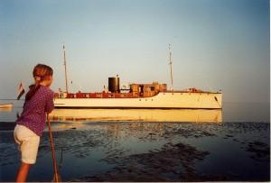 Nymphaea Zita Pels Vlieland 1995